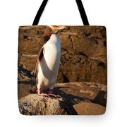 Adult Nz Yellow-eyed Penguin Or Hoiho On Shore Tote Bag