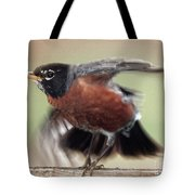 An Entertaining Baby American Robin Tote Bag