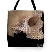 Anatomy Of The Skull Tote Bag
