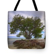 Anne's Beach-1 Tote Bag