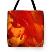 Begonia Named Nonstop Apricot Tote Bag