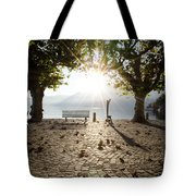 Bench And Trees Tote Bag