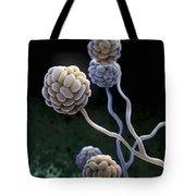 Black Mold Spores Tote Bag