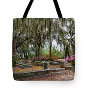 Bonaventure Cemetery Savannah Georgia Tote Bag