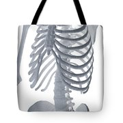 Bones Of The Torso Tote Bag