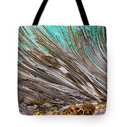 Bull Kelp Blades On Surface Background Texture Tote Bag by Stephan Pietzko