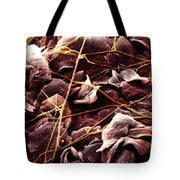 Candida And Epithelial Cells Tote Bag