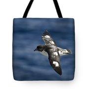 Cape Petrel Tote Bag