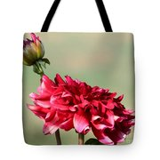 Dahlia Named Caproz Jerry Garcia Tote Bag