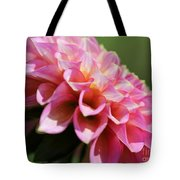 Dahlia Named Skipley Spot Of Gold Tote Bag