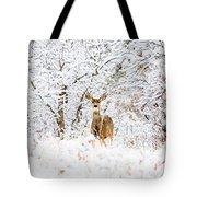 Doe Mule Deer In Snow Tote Bag
