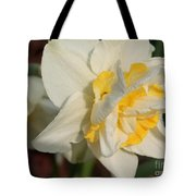 Double Daffodil Named White Lion Tote Bag