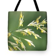 Flowering Brome Grass Tote Bag