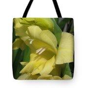 Gladiolus Named Nova Lux Tote Bag