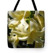 Hyacinth Named City Of Haarlem Tote Bag