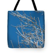 Ice Storm Poplars Tote Bag