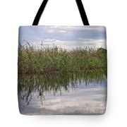 IImages From The Pantanal Tote Bag