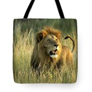 King Of The Savanna Tote Bag