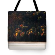 Lake In Autumn Tote Bag