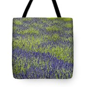Lavendar Field Rows Of White And Purple Flowers Tote Bag