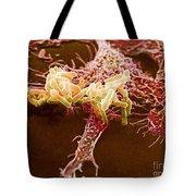 Macrophage Ingesting Pseudomonas Tote Bag