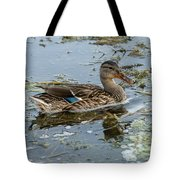 Mallard Duck Tote Bag