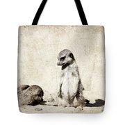 Meerkatz Tote Bag