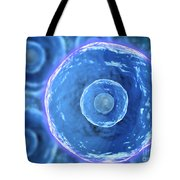 Microscopic View Of Human B-cells Tote Bag