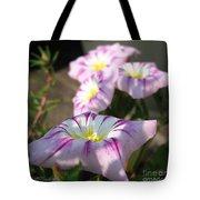 Morning Glory Named Pink Ensign Tote Bag