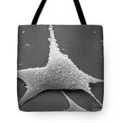 Mycoplasma Tote Bag by David M. Phillips