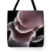 Newborn Anatomy Tote Bag