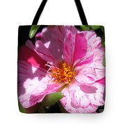 Portulaca Named Sundial Peppermint Tote Bag