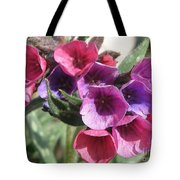 Pulmonaria Named Raspberry Splash Tote Bag