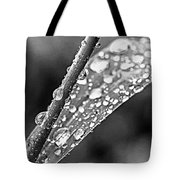 Raindrops On Grass Tote Bag