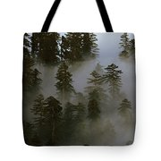 Redwood Creek Overlook With Giant Redwoods Sticking Out Above Lo Tote Bag