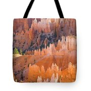 Sandstone Hoodoos In Bryce Canyon  Tote Bag
