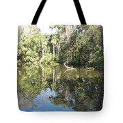 Swamp Reflection Tote Bag