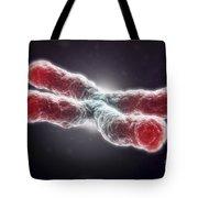 Telomeres Tote Bag