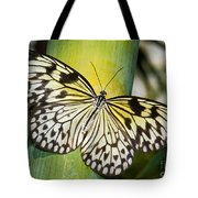 Tree Nymph Butterfly Tote Bag