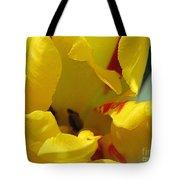 Triumph Tulip Named Washington Tote Bag