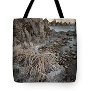 Tufa Formations, Mono Lake, Ca Tote Bag
