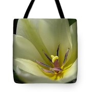 Tulip Named Perles De Printemp Tote Bag