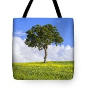 Tuscany - Val D'orcia Tote Bag