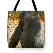Western Lowland Gorilla Male Tote Bag