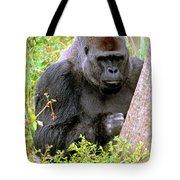 Western Lowland Gorilla Tote Bag