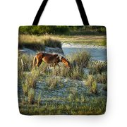 Wild Spanish Mustang Tote Bag