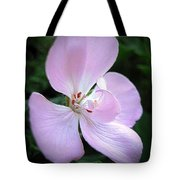 Zonal Geranium Named Tango Light Orchid Tote Bag