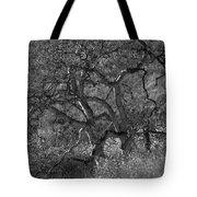 50 Shades Of Gray Trees Tote Bag