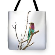African Birds Tote Bag