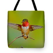 Allens Hummingbird Tote Bag